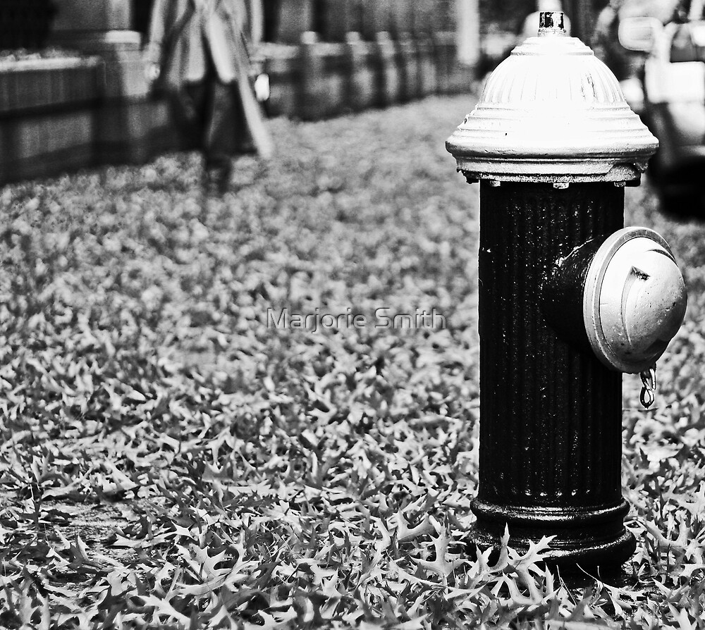 Fire Hydrant by Marjorie Smith