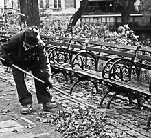 Keeping Central Park Clean by Marjorie Smith