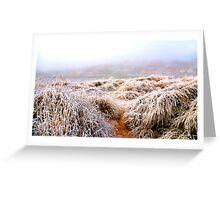 Frozen dunes Greeting Card