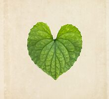 Heart Shaped Leaf on Vintage Paper by WildPoetry