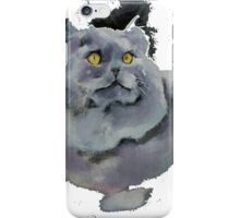 Persian Beauty iPhone Case/Skin