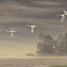 Three Swans (ver.2) by Walter Colvin