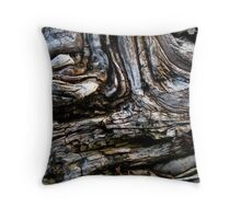 Currents of Decay Throw Pillow