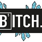 BITCH by shinypigeon