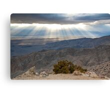 Mojave Desert Sunset Canvas Print