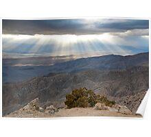 Mojave Desert Sunset Poster