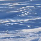 Waves On The Prairie by Stephen Thomas