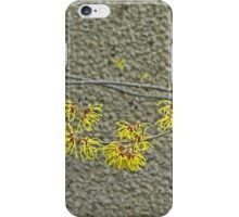 Witch Hazel Against the Garden Wall iPhone Case/Skin