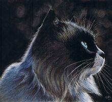 Moonlight Watch by Karen  Hull