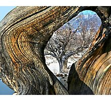 Eye Of Time Photographic Print