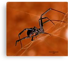 Electric Orange Slide    ( Black Widow Series) Canvas Print