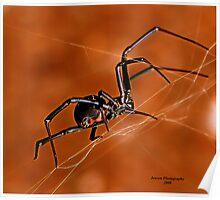 Electric Orange Slide    ( Black Widow Series) Poster