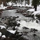 River running in the winter by gregorydean