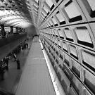 Washington Subway by Tracey Hampton