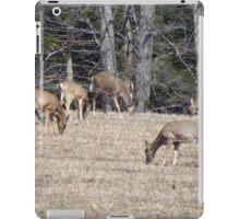 Doe...a deer...a female deer iPad Case/Skin