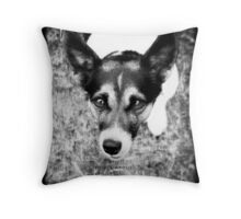 Terrier Obsession: It's All About The Ball - Black and White Remix Throw Pillow
