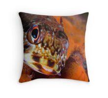 Dragonet Throw Pillow