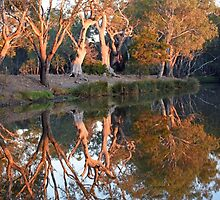 Sunrise Reflections, Lake Lonsdale Stawell by forgantly