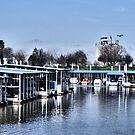 Sacramento River Marina ~ Miller Park by NancyC