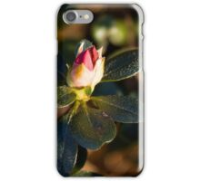 Coming Attractions iPhone Case/Skin