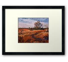typical Texas Framed Print