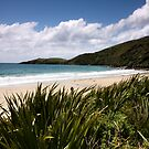 Stewart Island Beach by Gina Ruttle  (Whalegeek)