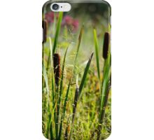 Cattails iPhone Case/Skin