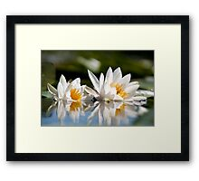 Сlose-up beauty Framed Print