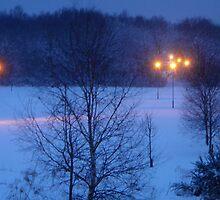 Winter I by maskedfan
