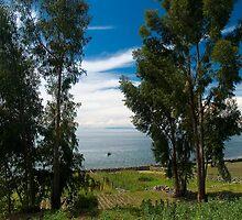 Beautiful scenery of Titicaca lake, Peru  by juan jose Gabaldon