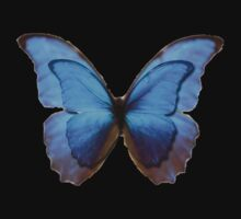 Butterfly Effect by K Thomson