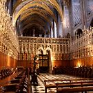 Basilica of St Cecile, Albi, France by chord0