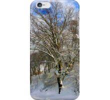 Winter's Morning iPhone Case/Skin