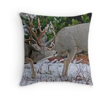 Mule Deer Buck Fight 2 Throw Pillow
