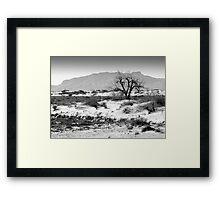 Alamogordo Framed Print