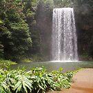 Millaa Millaa Falls by PeaceM