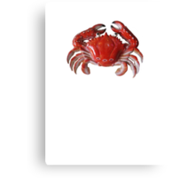 CRAB tee Canvas Print