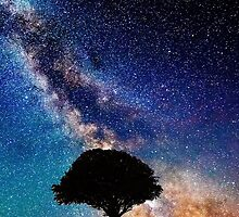 Galaxy With Tree On Hill Top by Niftycallum
