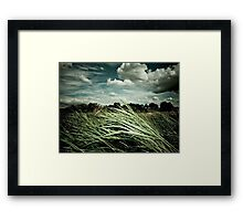 Independent Summer (2004) Framed Print