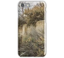 Ghost Town Foundation in Standardville, Utah iPhone Case/Skin