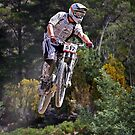 Forest Jump by fotosports
