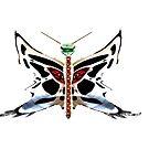 bike butterfly by WOTinc