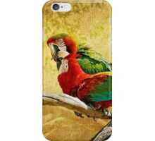 Sweet, Sweet Love iPhone Case/Skin