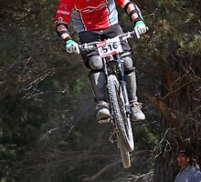 Pine Forest Jump by fotosports