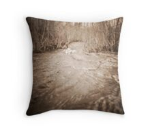 untitled~4 Throw Pillow