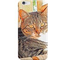 A cat's life iPhone Case/Skin
