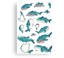 whale sharks! Canvas Print