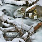 Snow Creek by Ken Fortie