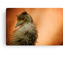 That Shy Come-Hither Stare Canvas Print