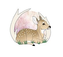 Spring Fawn Version One Photographic Print